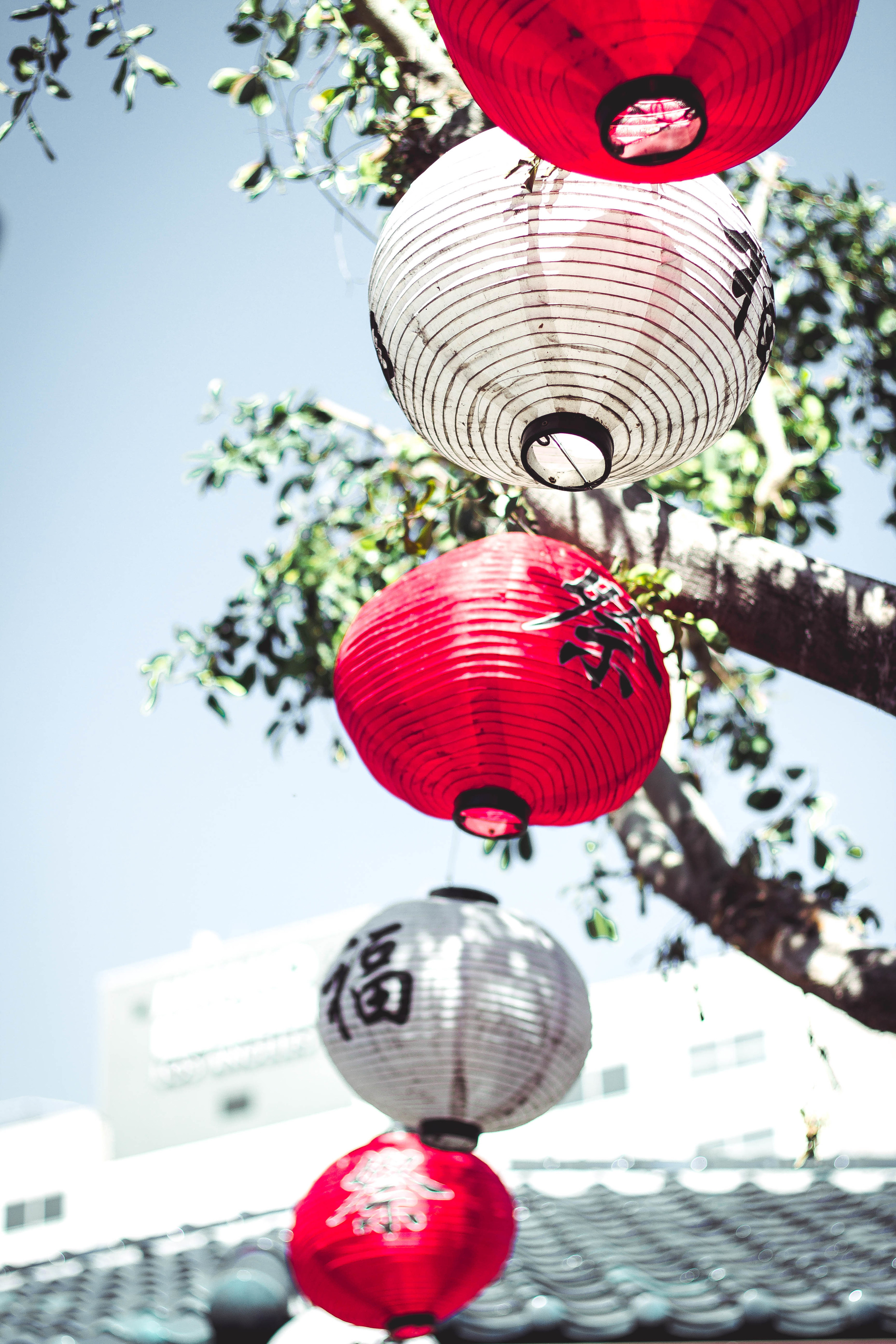 Japanese lanterns in Little Tokyo | by fit for the soul