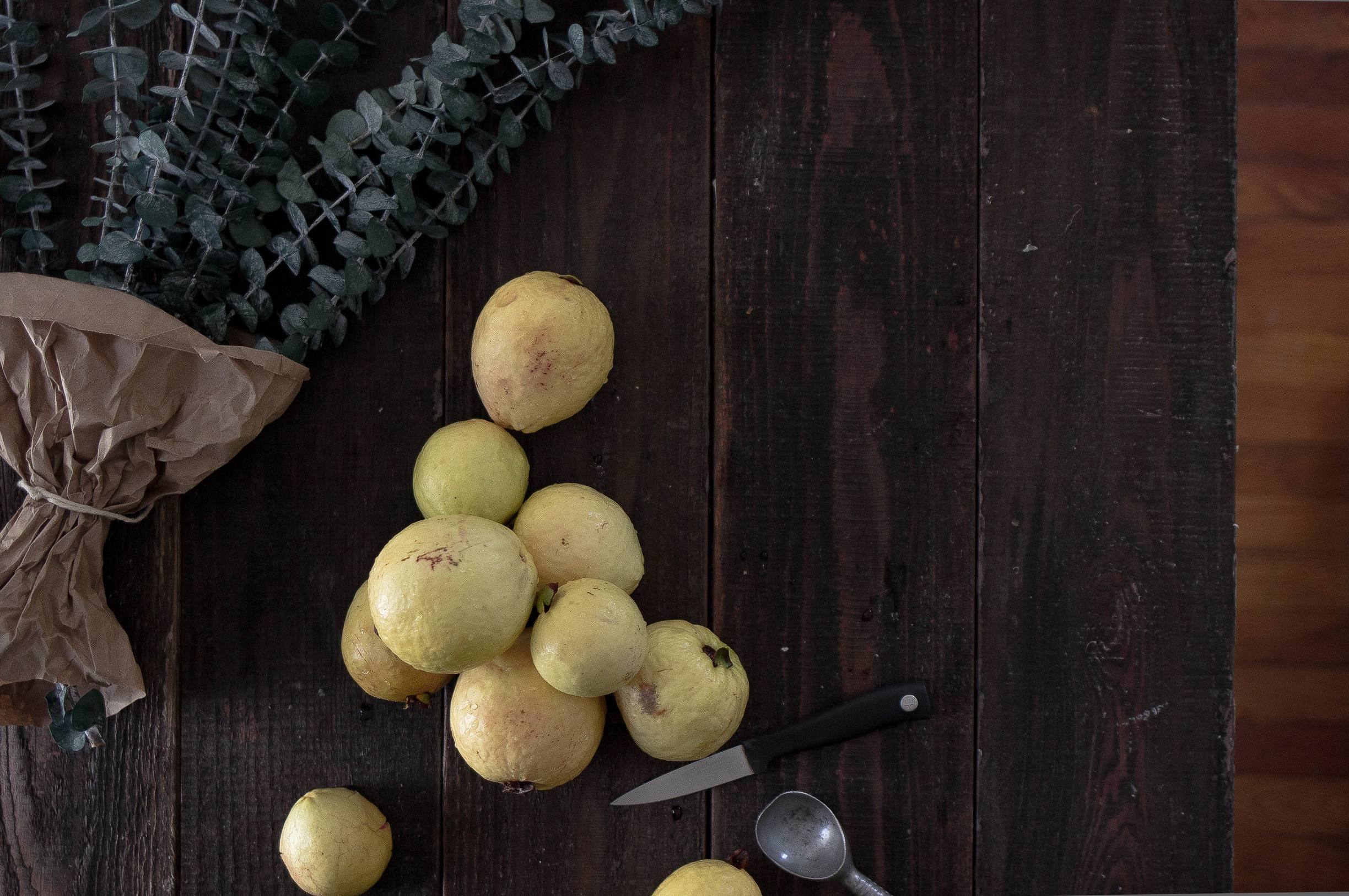 Homegrown guavas plus a guava recipe | by fit for the soul