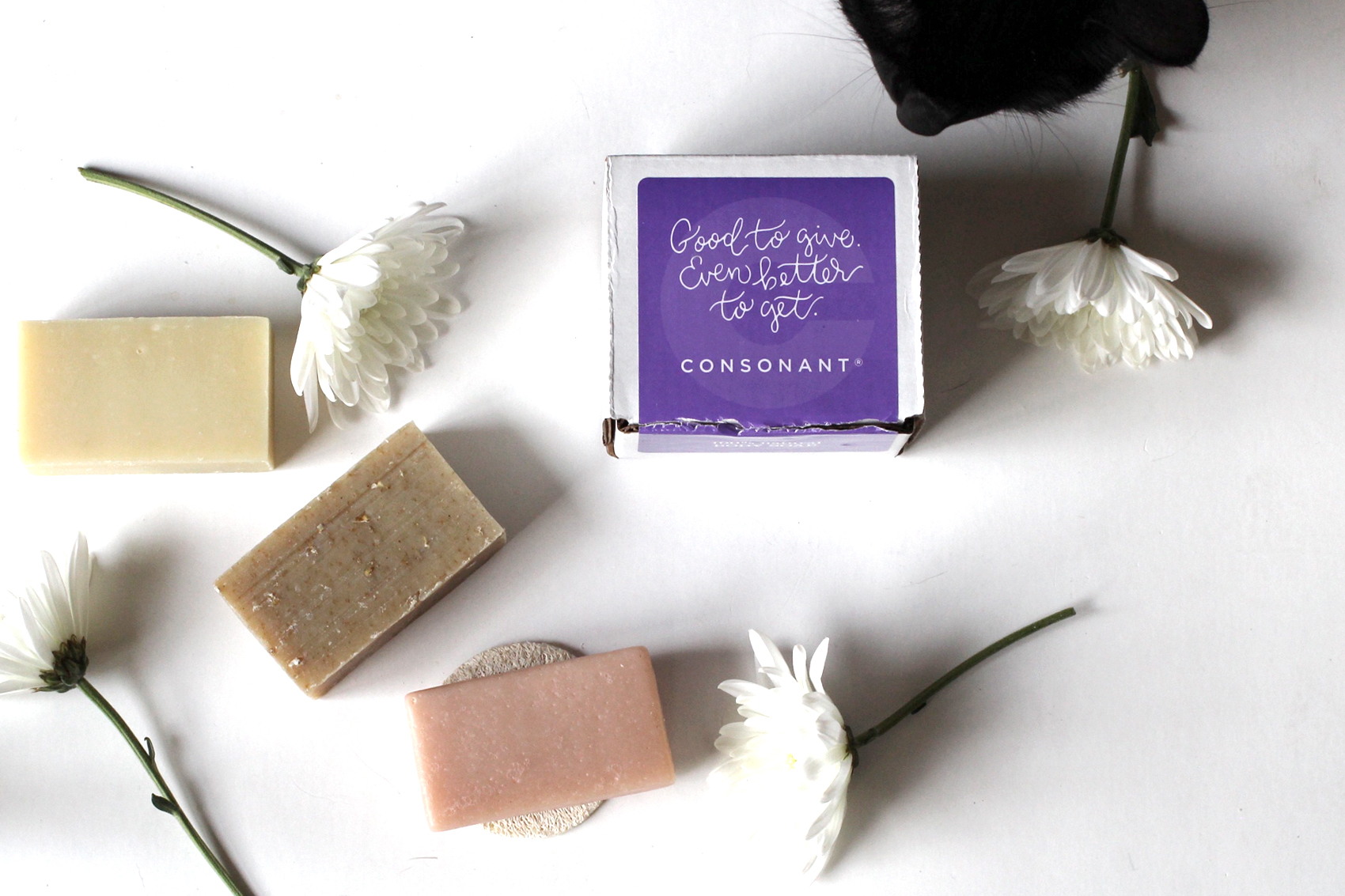 Natural Soap Bars  (available in oatmeal, lavender, mint and grapefruit+rosemary) Set of 3 comes in holiday packaging, $5.00-$12.00
