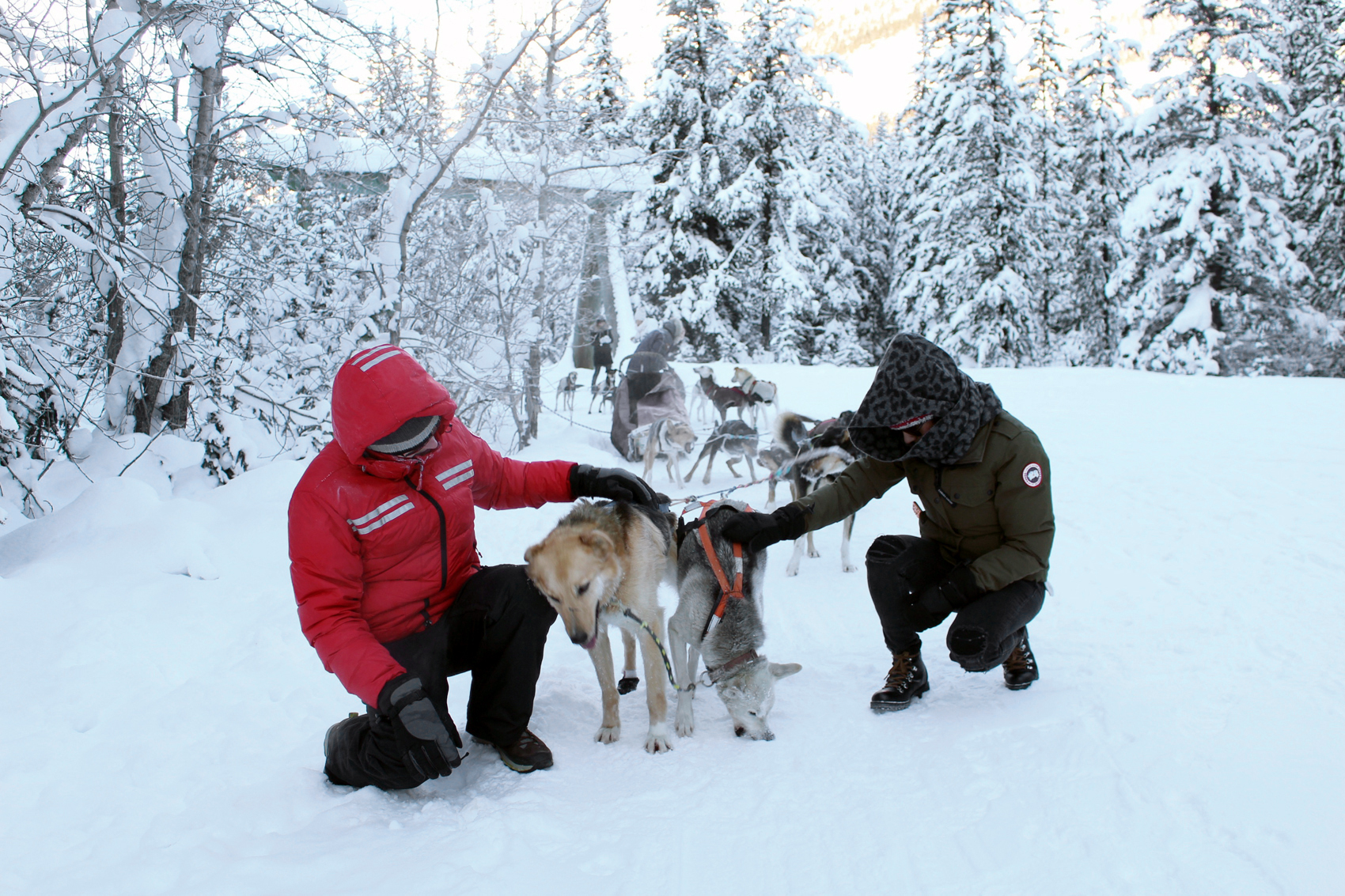 Geoff and I wrapped up as warm as possible meeting our sled dogs.
