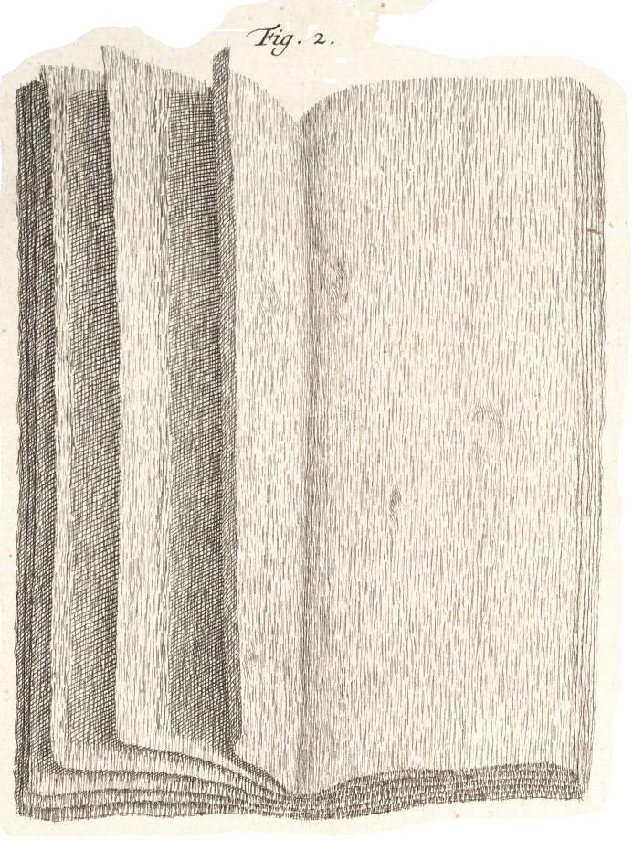 Albertus Seba,  Locupletissimi rerum naturalium thesauriaccurata descriptio .