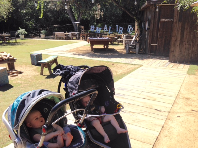 Duke and Jonathan hanging out in their strollers