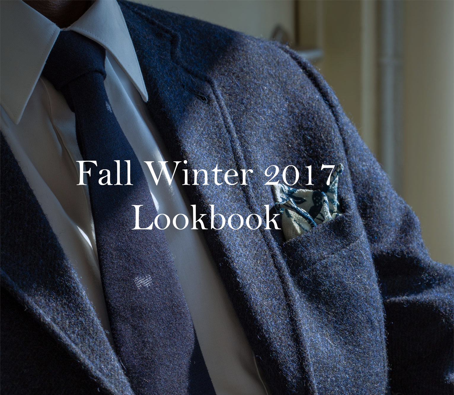Fall winter look book.png