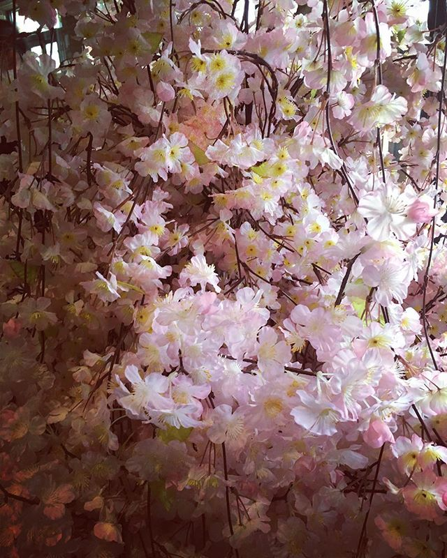 Making way for Spring. #spring #cherryblossoms #japaneseinspired #bostonmade #handsewn #handcrafted #madeinnewengland #usamade