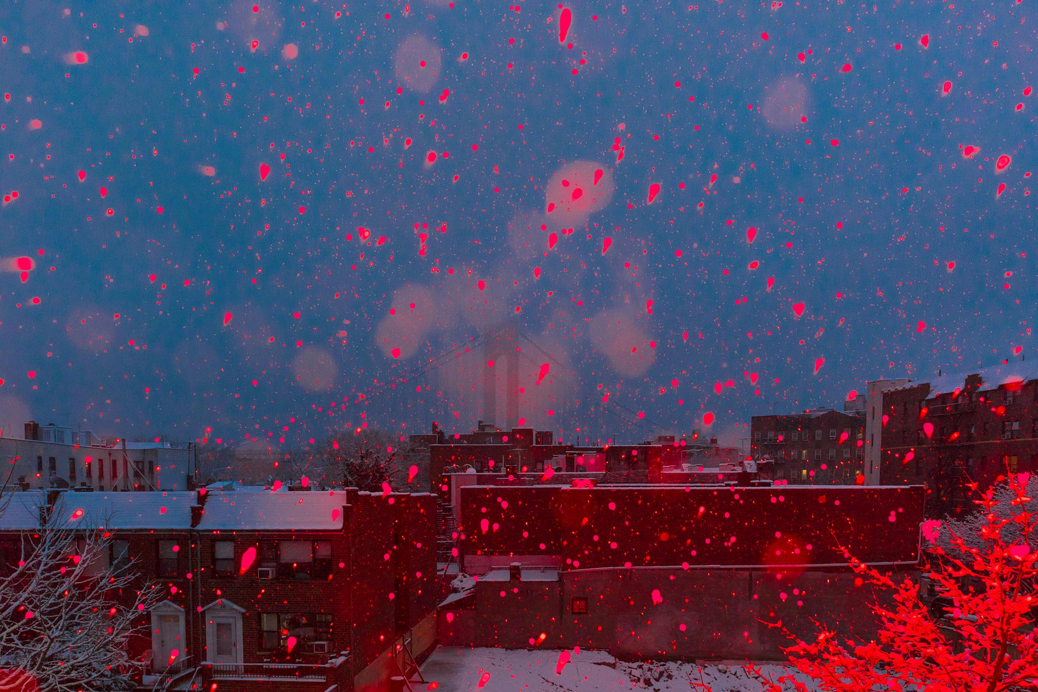 fb.cc.12.9.2017.first snow Red Filled in brooklyn_K9A9569.jpg