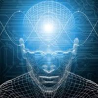 human+brain+4.jpg