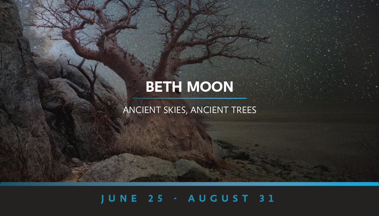 _CIT_Beth_Moon_Web_Banner.png