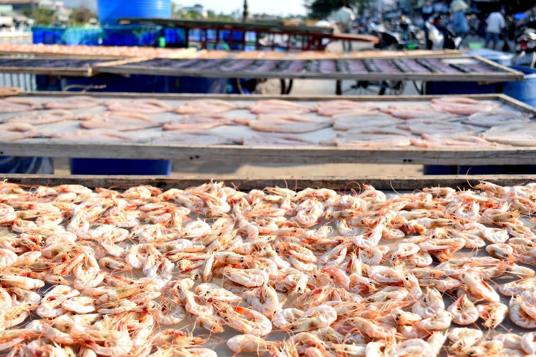 Shrimp in Tra Vinh