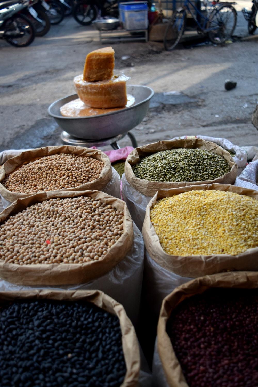 Legumes in Ben Tre