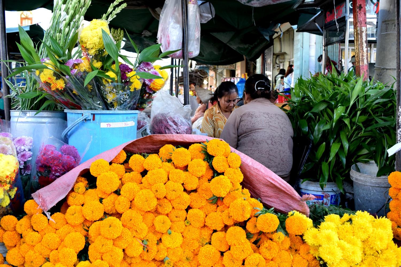Flowers somewhere between Saigon and Mui Ne