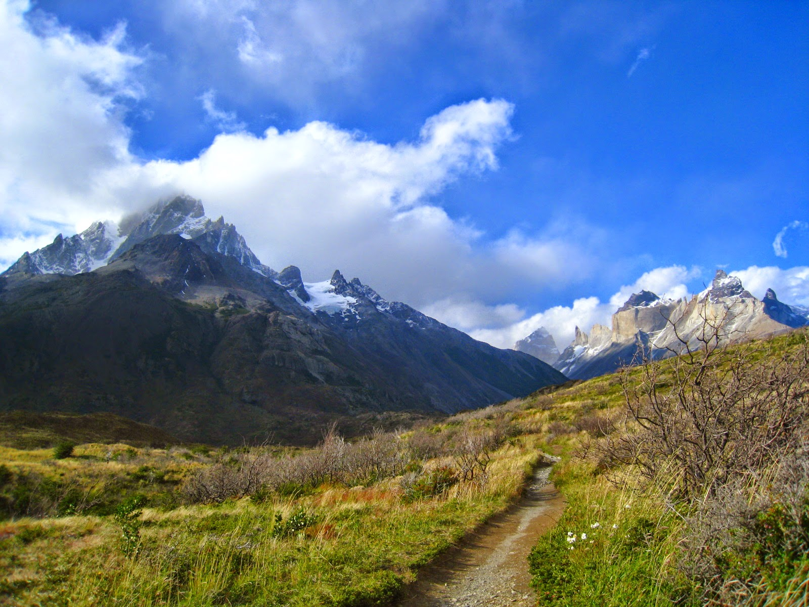 Photo taken while adventuring through Torres del Paine in Patagonia.