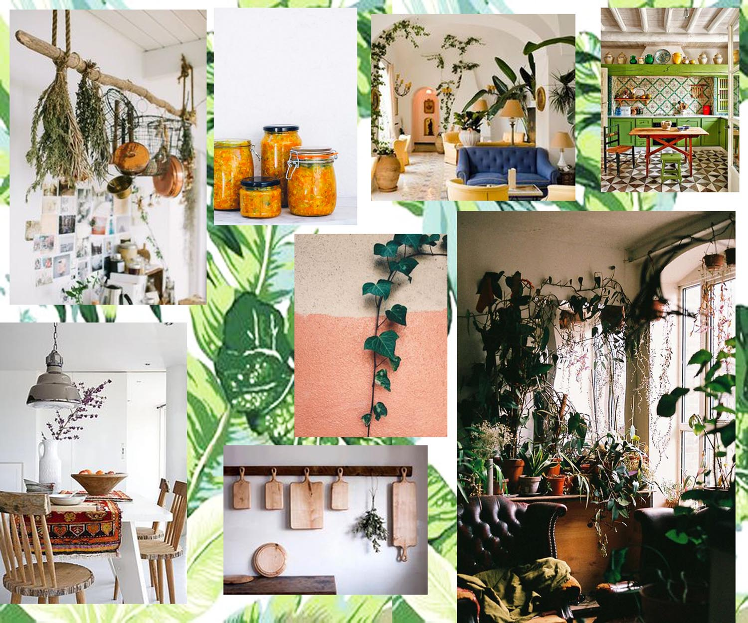 Monday Mood Board Green Kitchens fayelessler.com Faye Lessler sustainable living
