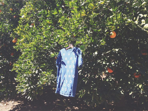 An indigo dyed t-shirt drying in the breeze of Liz's California orange grove. Image courtesy of Liz Spencer.