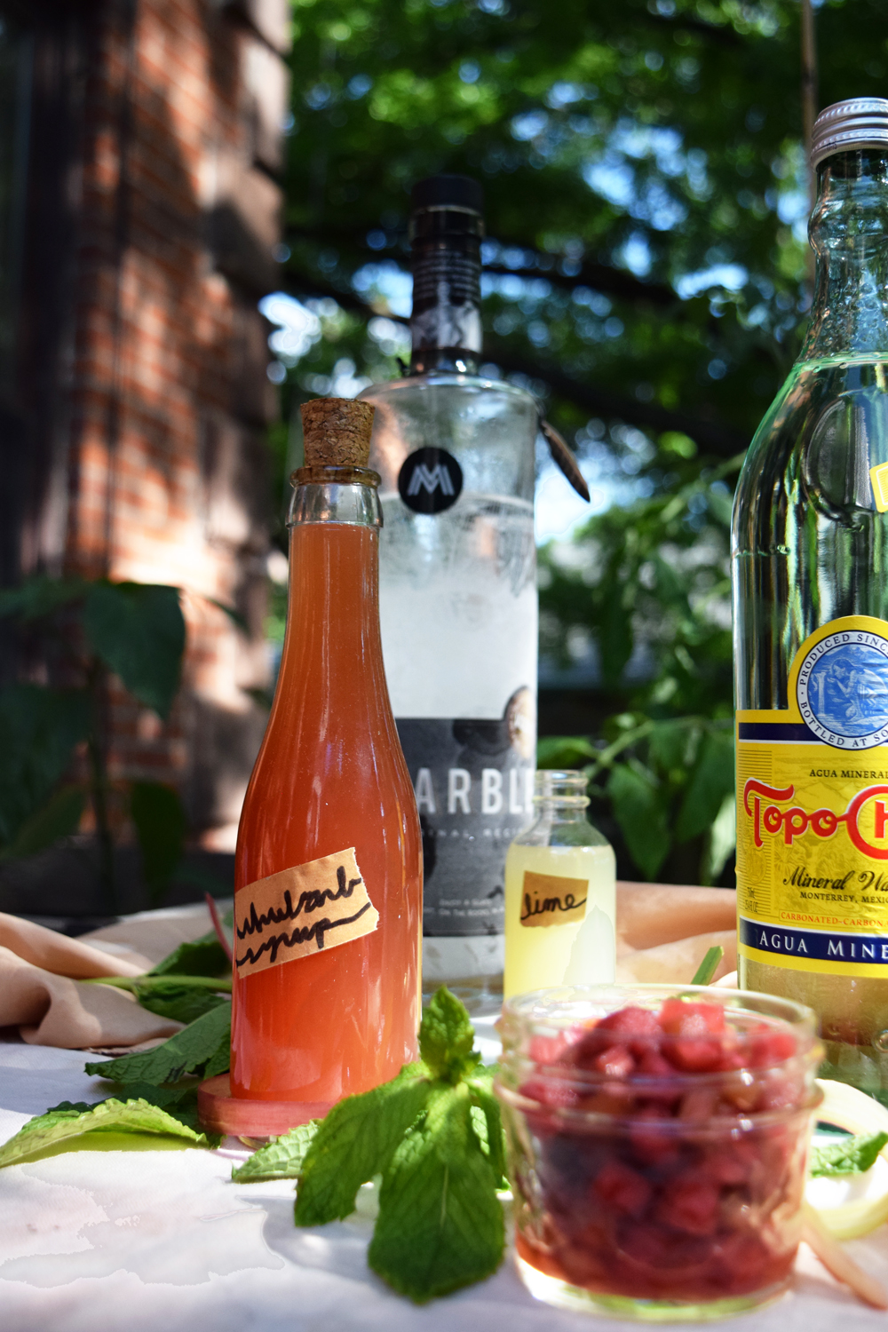 ingredients for rhubarb cocktail with Topo Chico and Marble Distilling Co sustainable vodka
