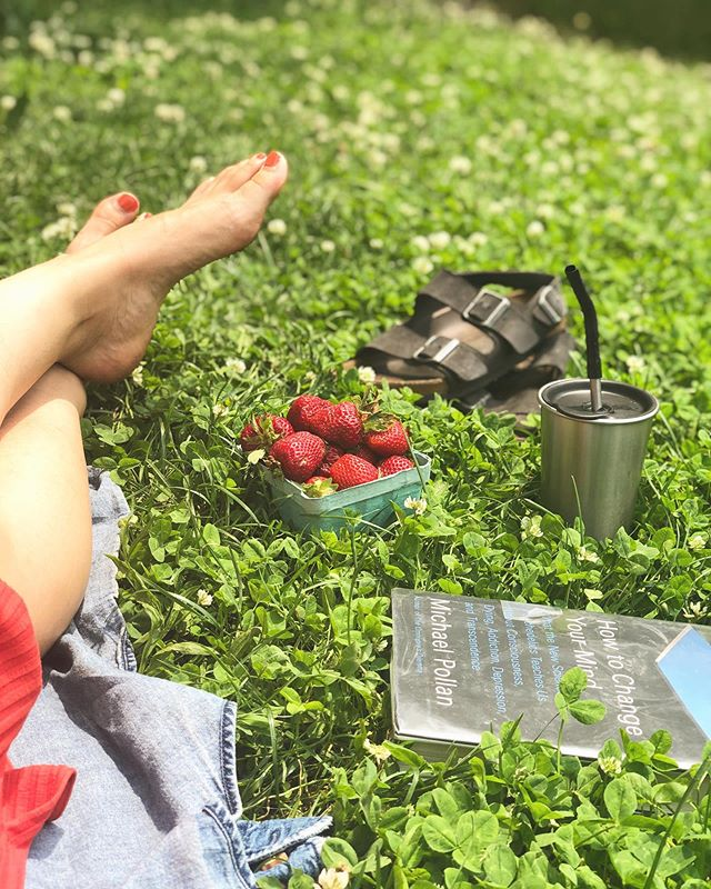 When life gives you perfect picnicking weather, you oblige 🌞 - #plasticfree coffee in my @kleankanteen stainless steel cup w/lid & straw, #locallygrown strawberries from @bkgreenmarkets, #secondhand Birkenstocks via @ebay, & library book all about psychedelics, mysticism, and psychology by @michael.pollan 🍓🌿
