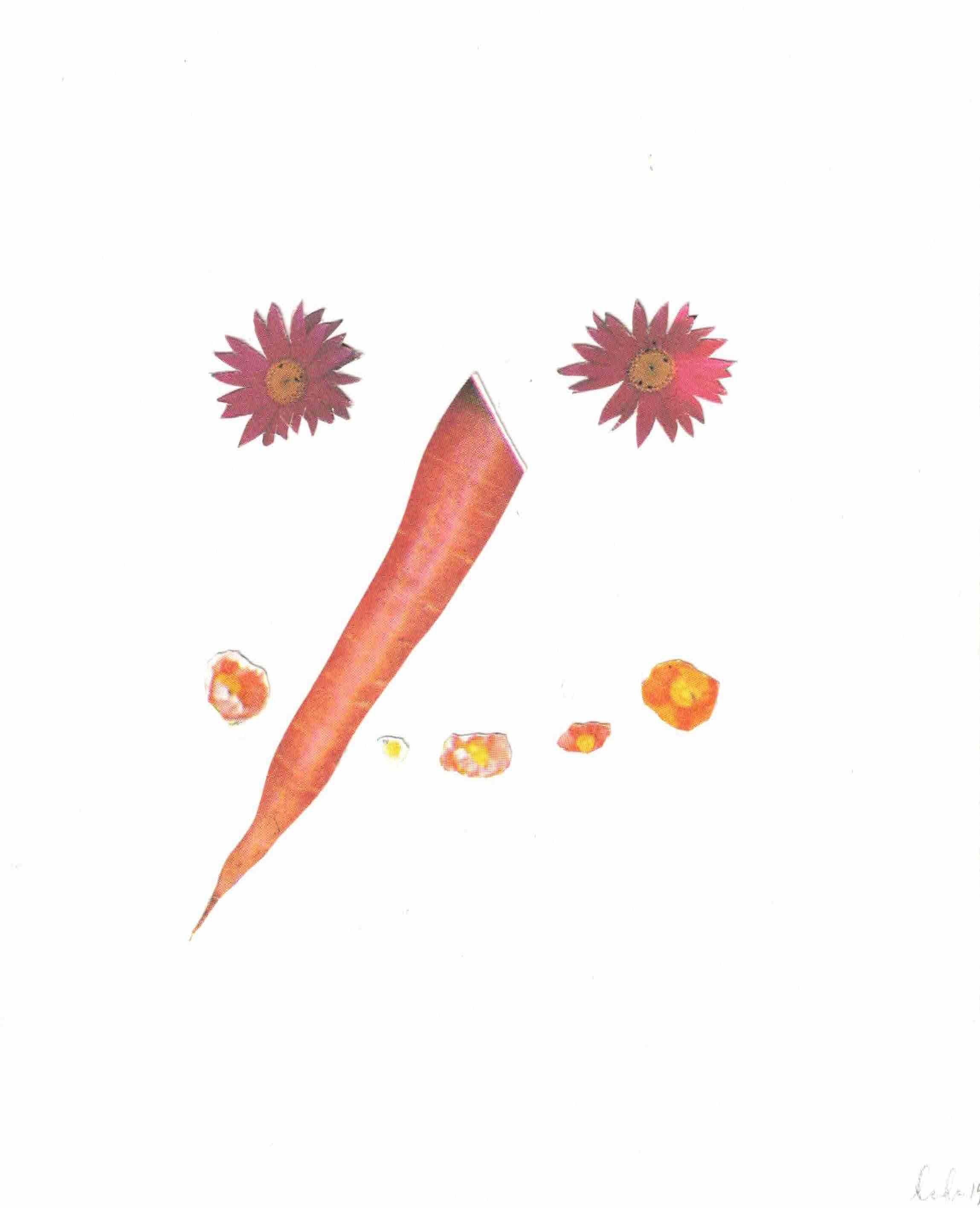zucchini -1.jpeg