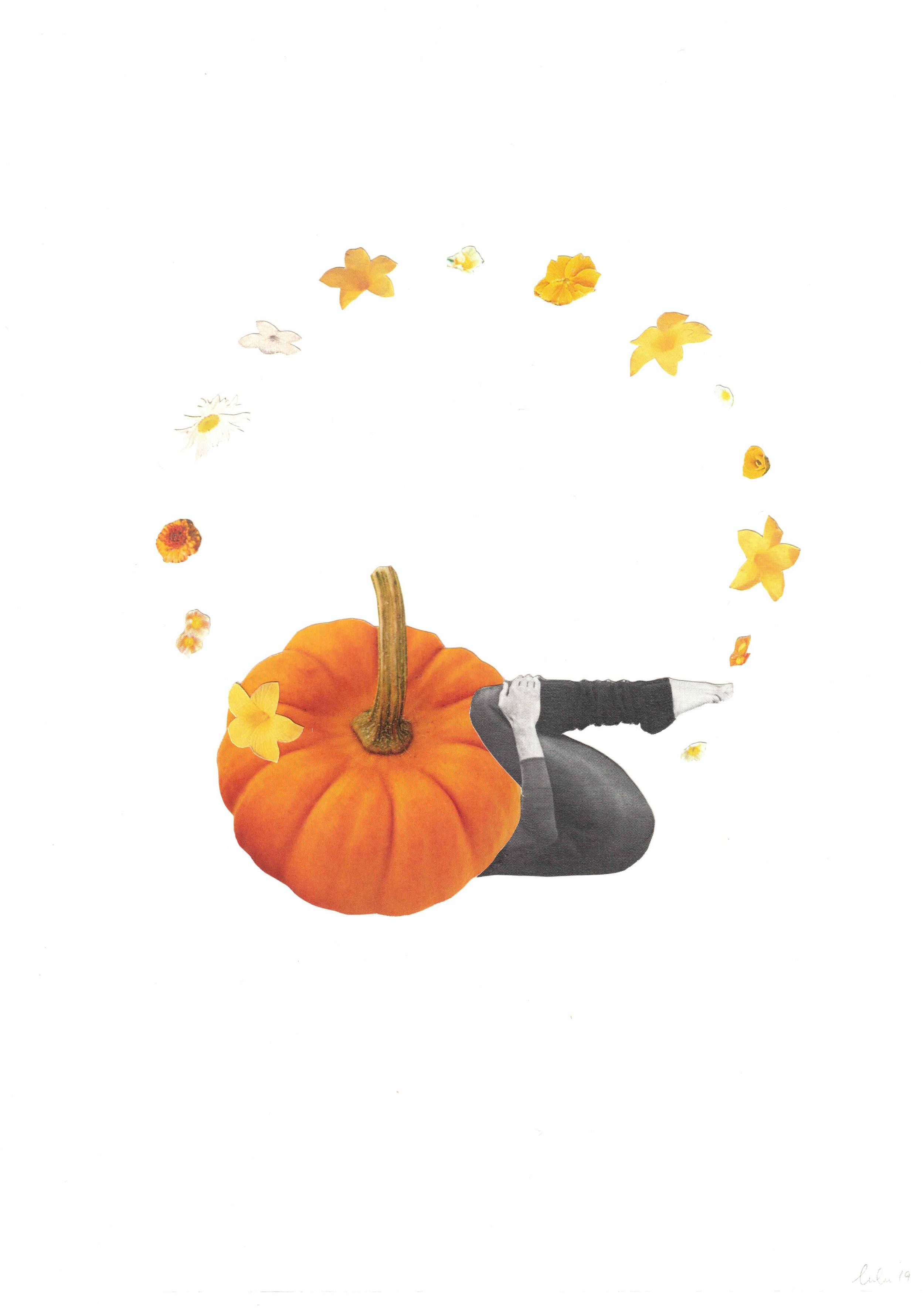 pumpkin butt.jpeg