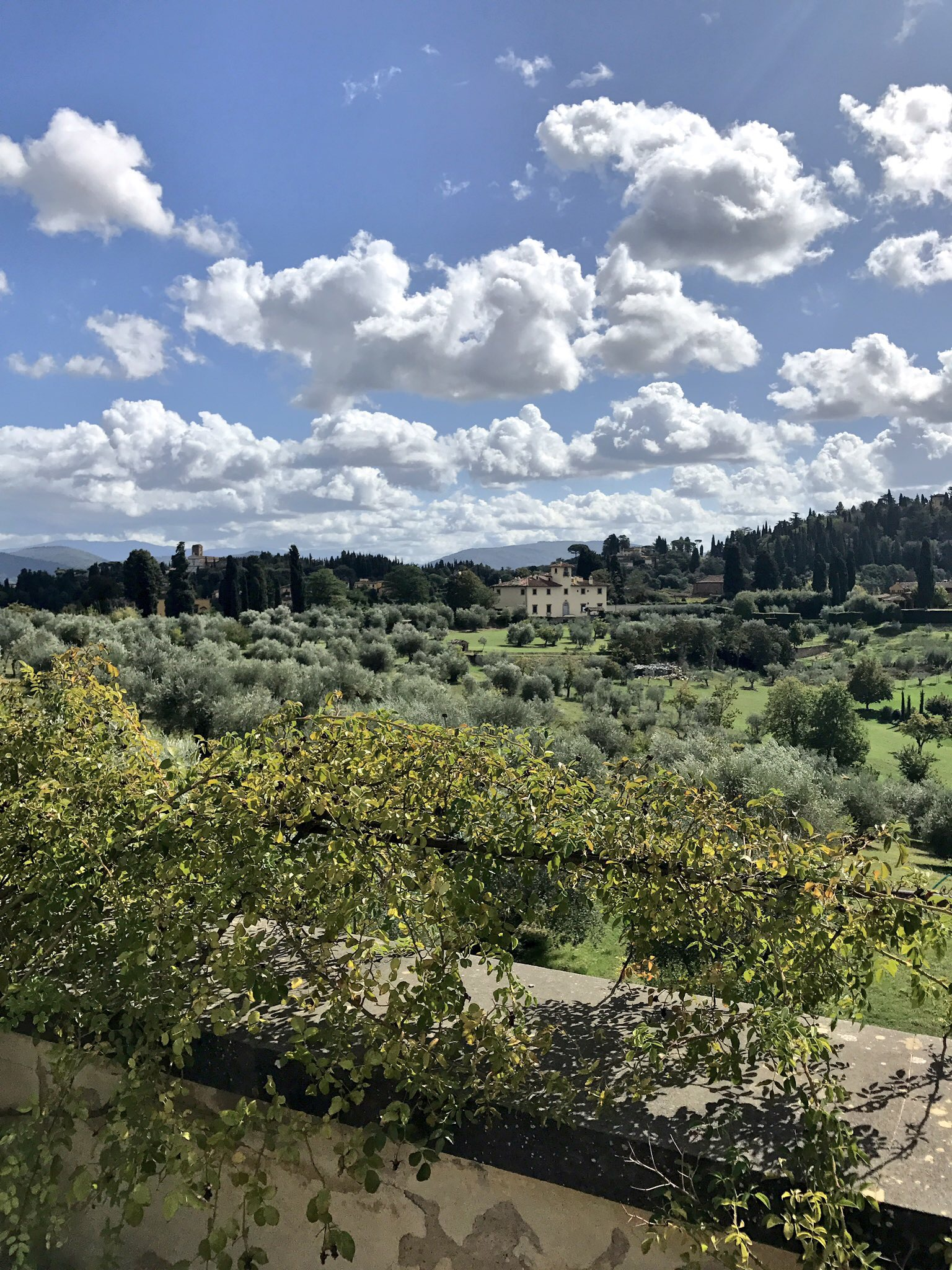 View of Florence.jpg