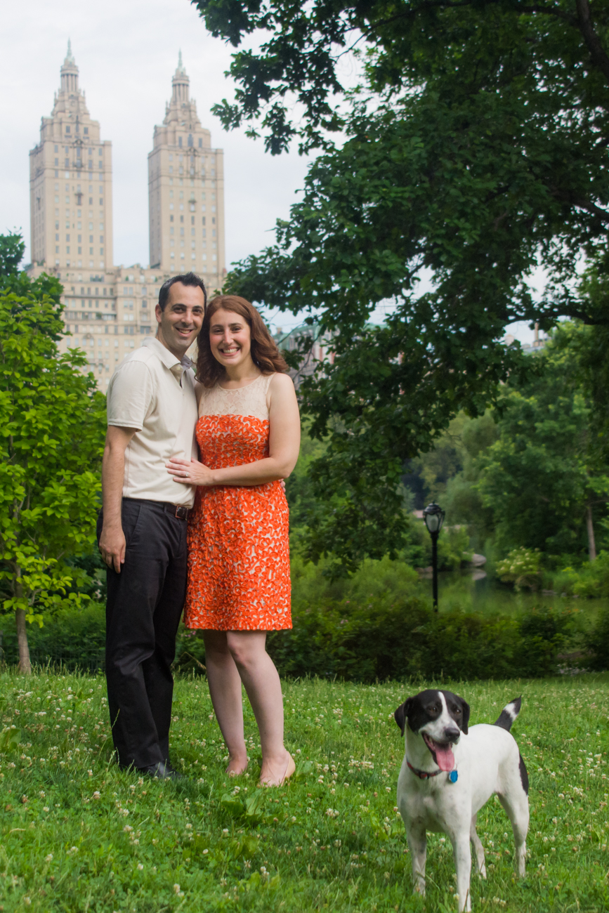 Engagement in Central Park, NY