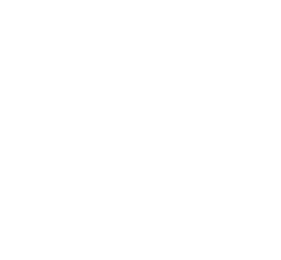 Web - StoryBrand Guide Badge WHITE.png