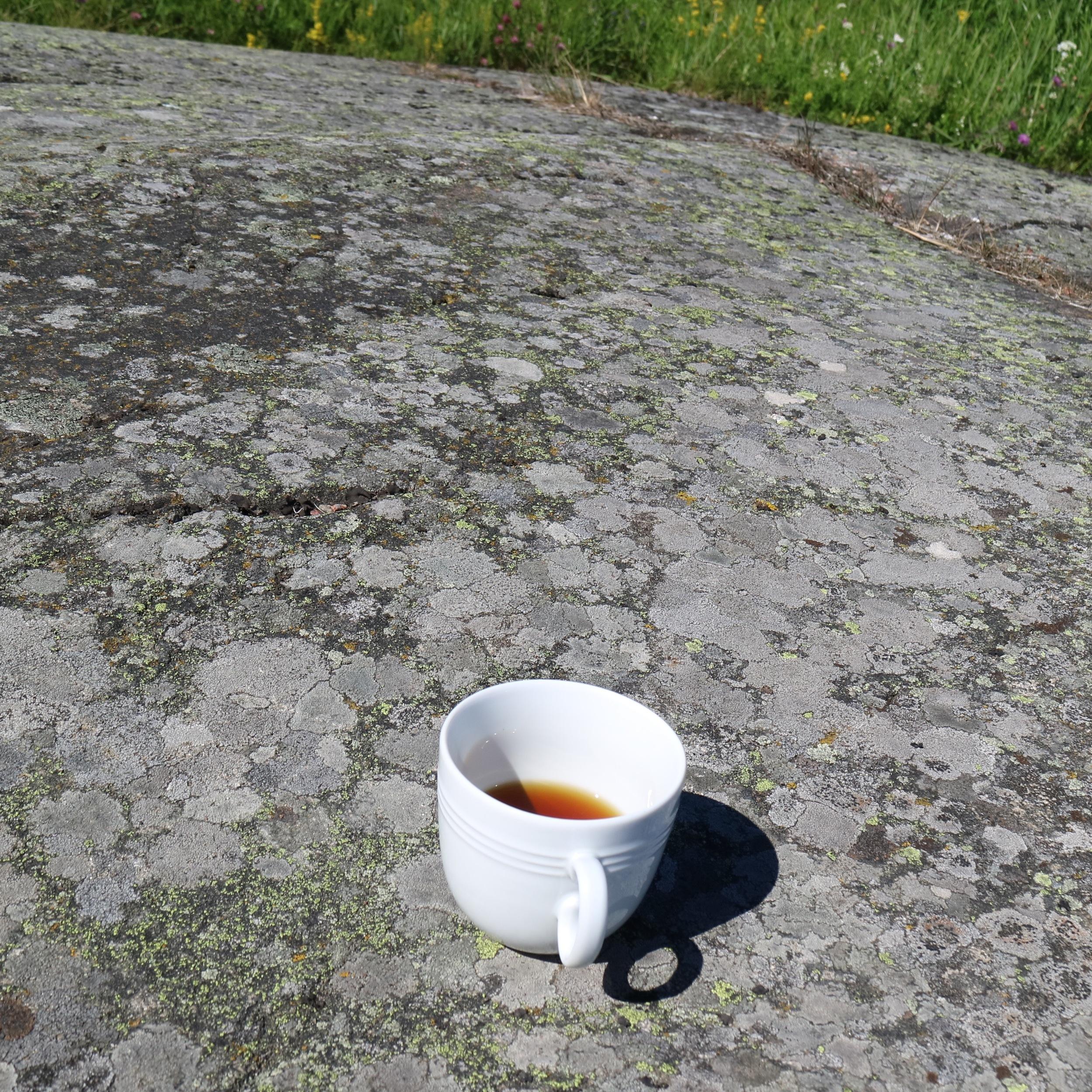 COFFEE ON A ROCK.jpg