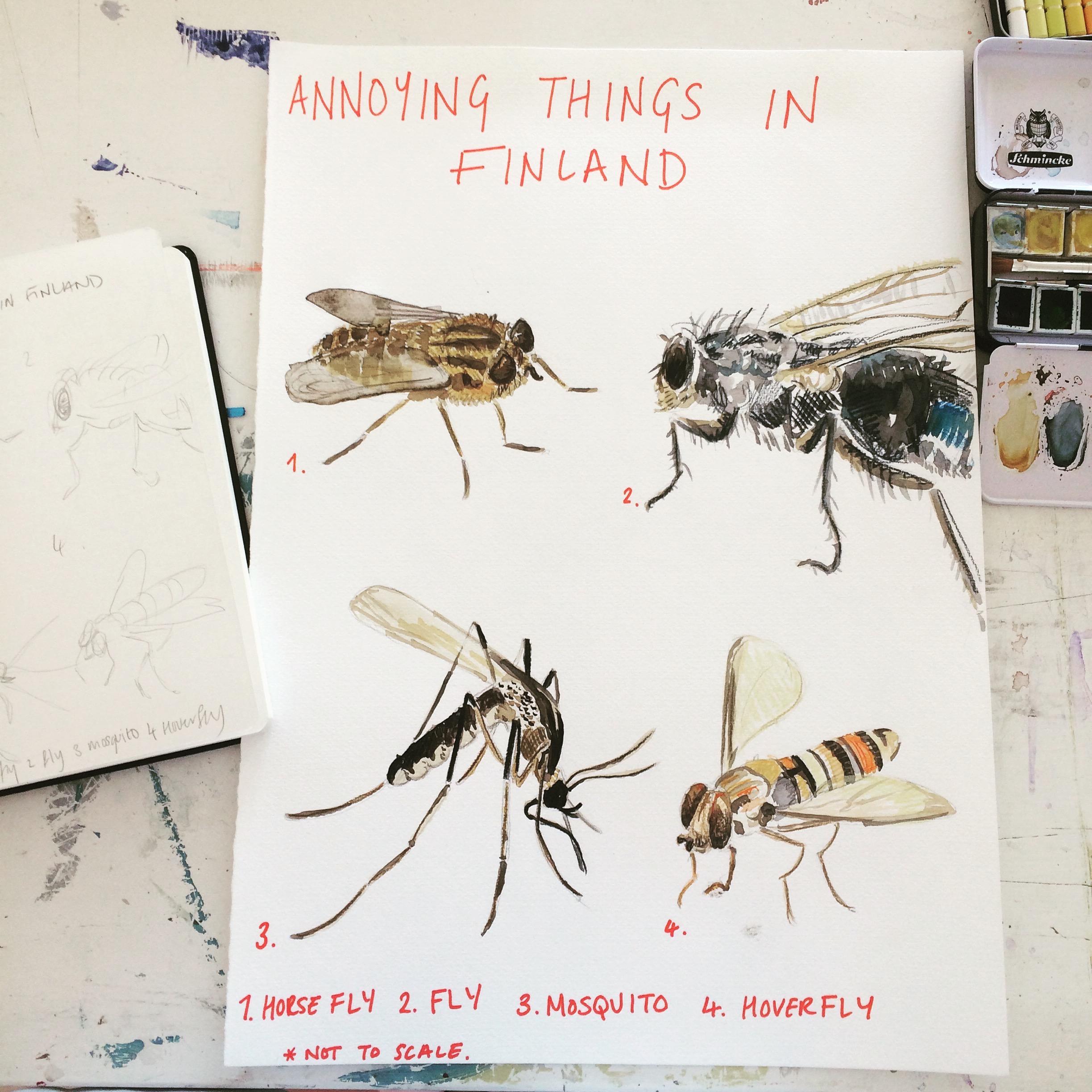 Annoying things in Finland.jpg