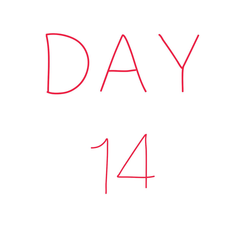 Day 14.jpg