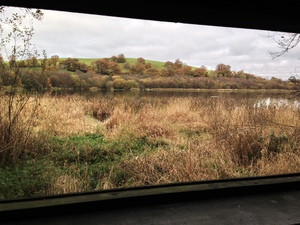 Bird watching hide on our West Lake - just 10 minutes walk from the cottages