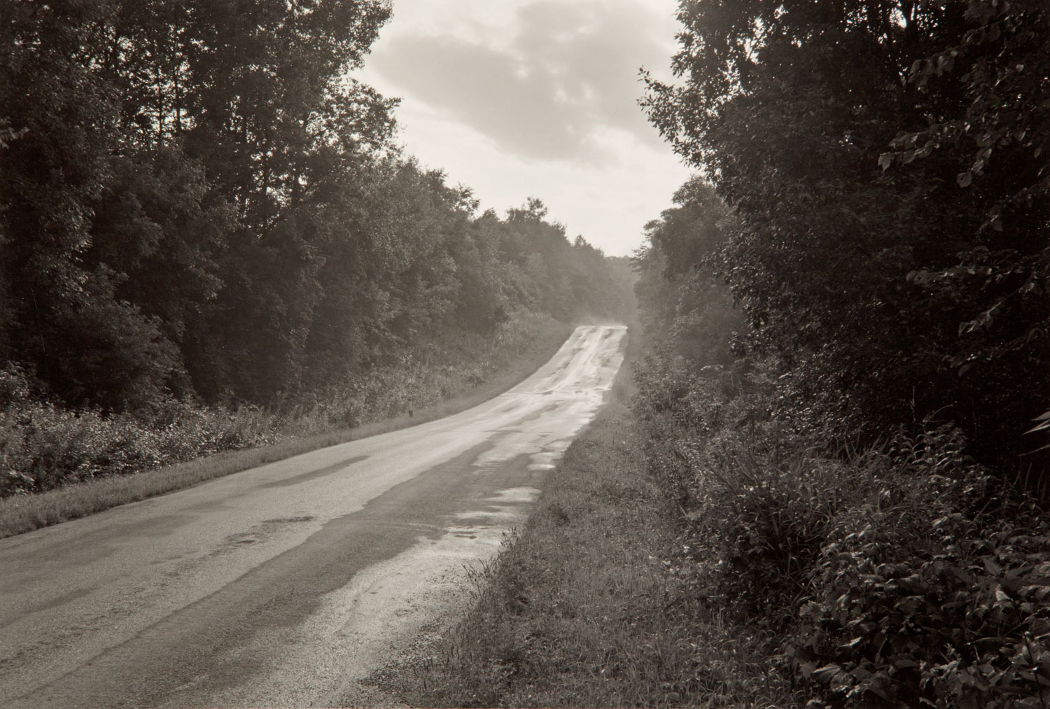 Road After Rain, Wisconsin