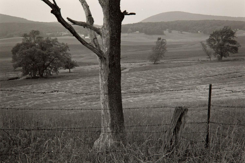Landscape, Northern Maryland