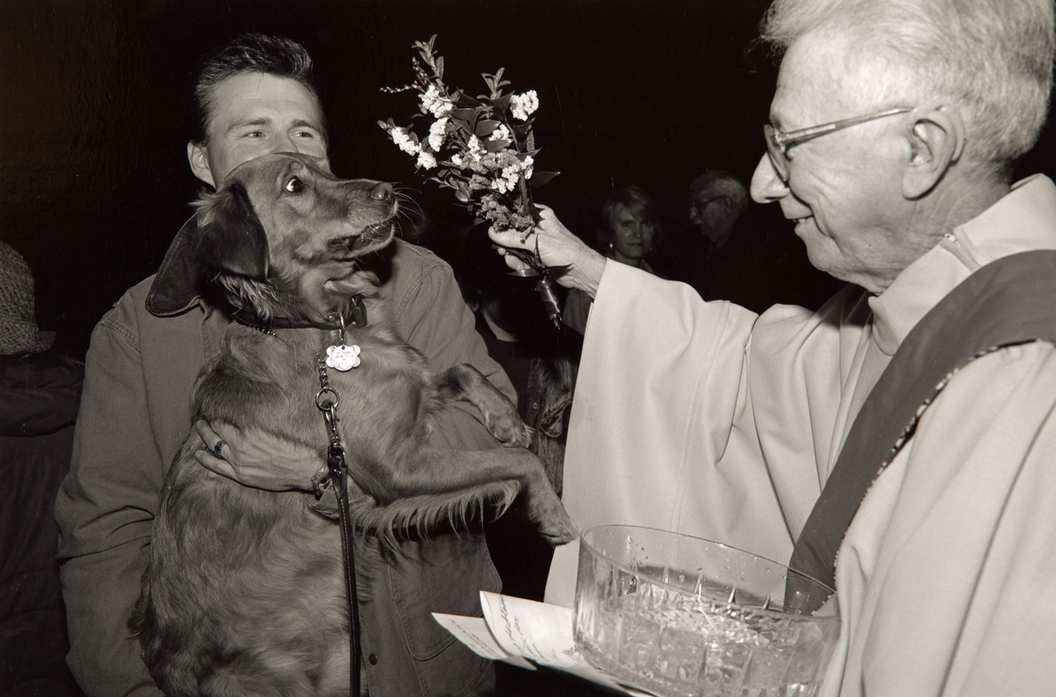Blessing of the Animals, St. Mary's Basilica, Minneapolis (II)