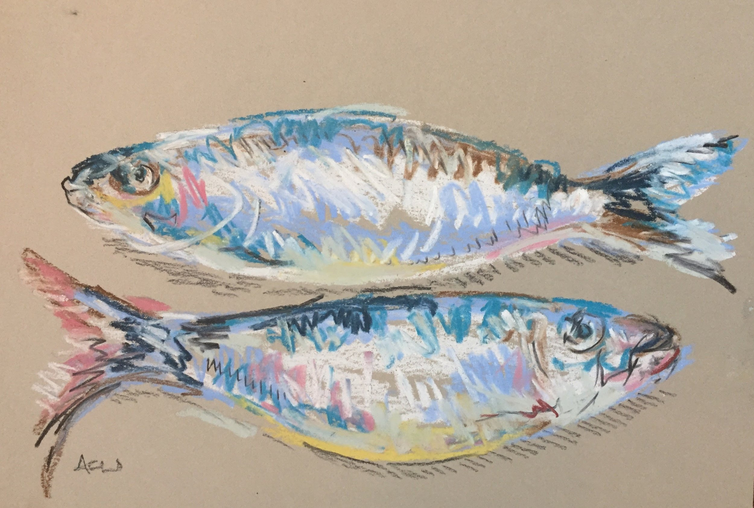 Mackerel 2.JPG