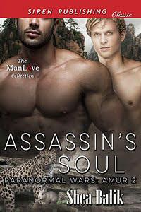 Assasin's Soul