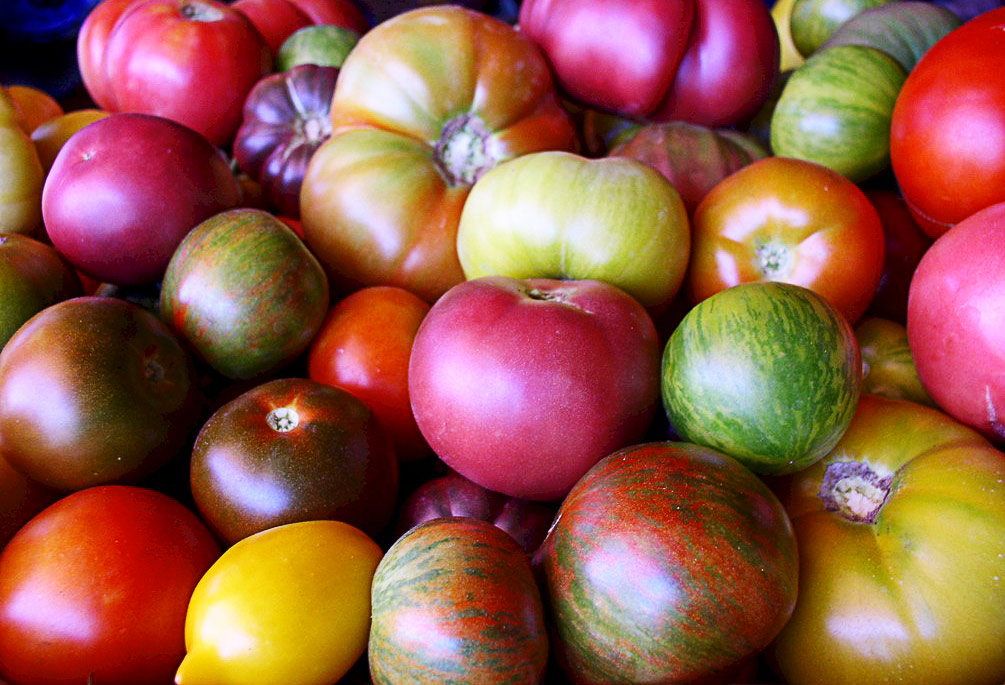 Heirloom-Tomatoes.jpg