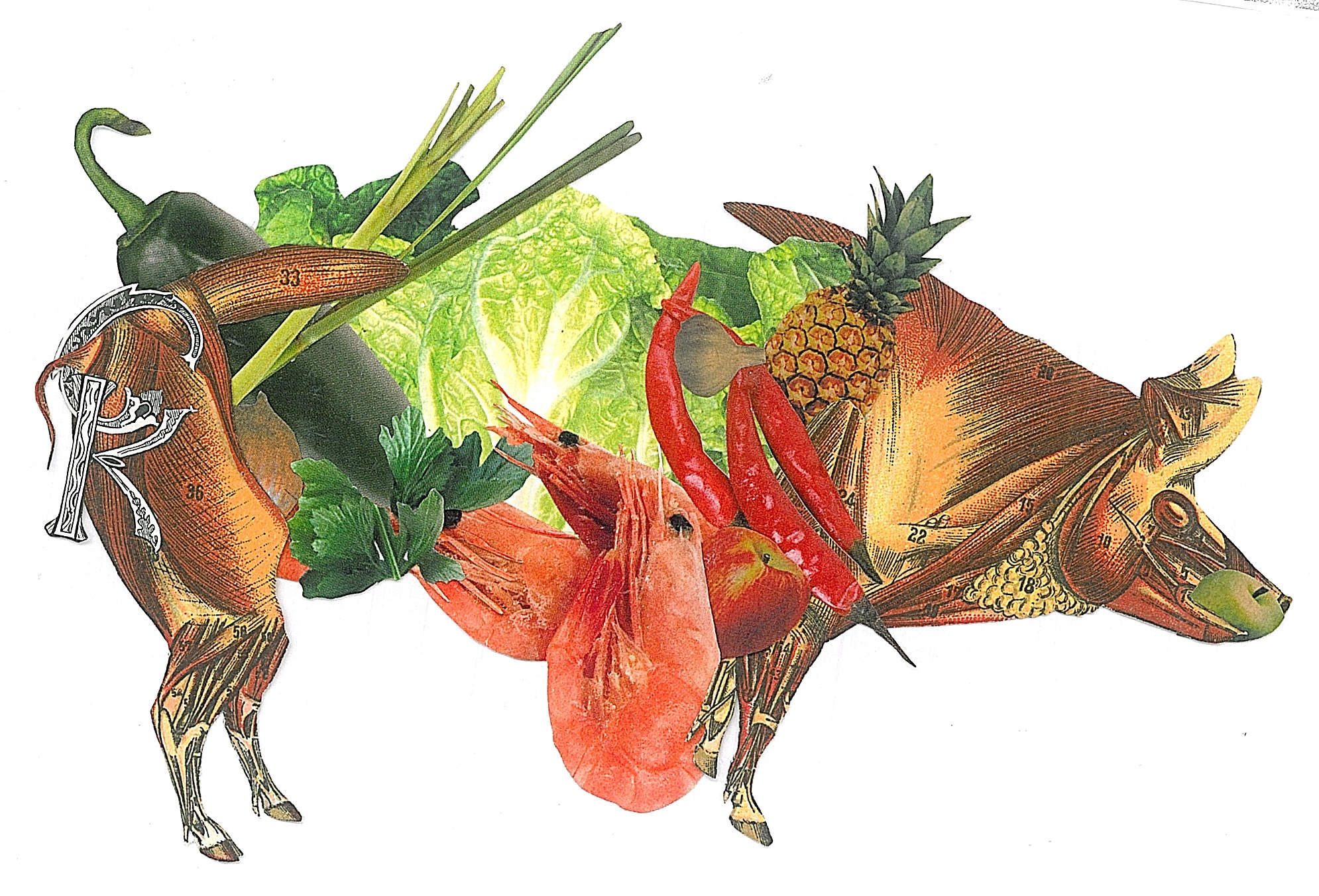 Another beautiful food collage with  Inas Al-Soqi . It is amazing how these are turning out. Continually blowing my mind.