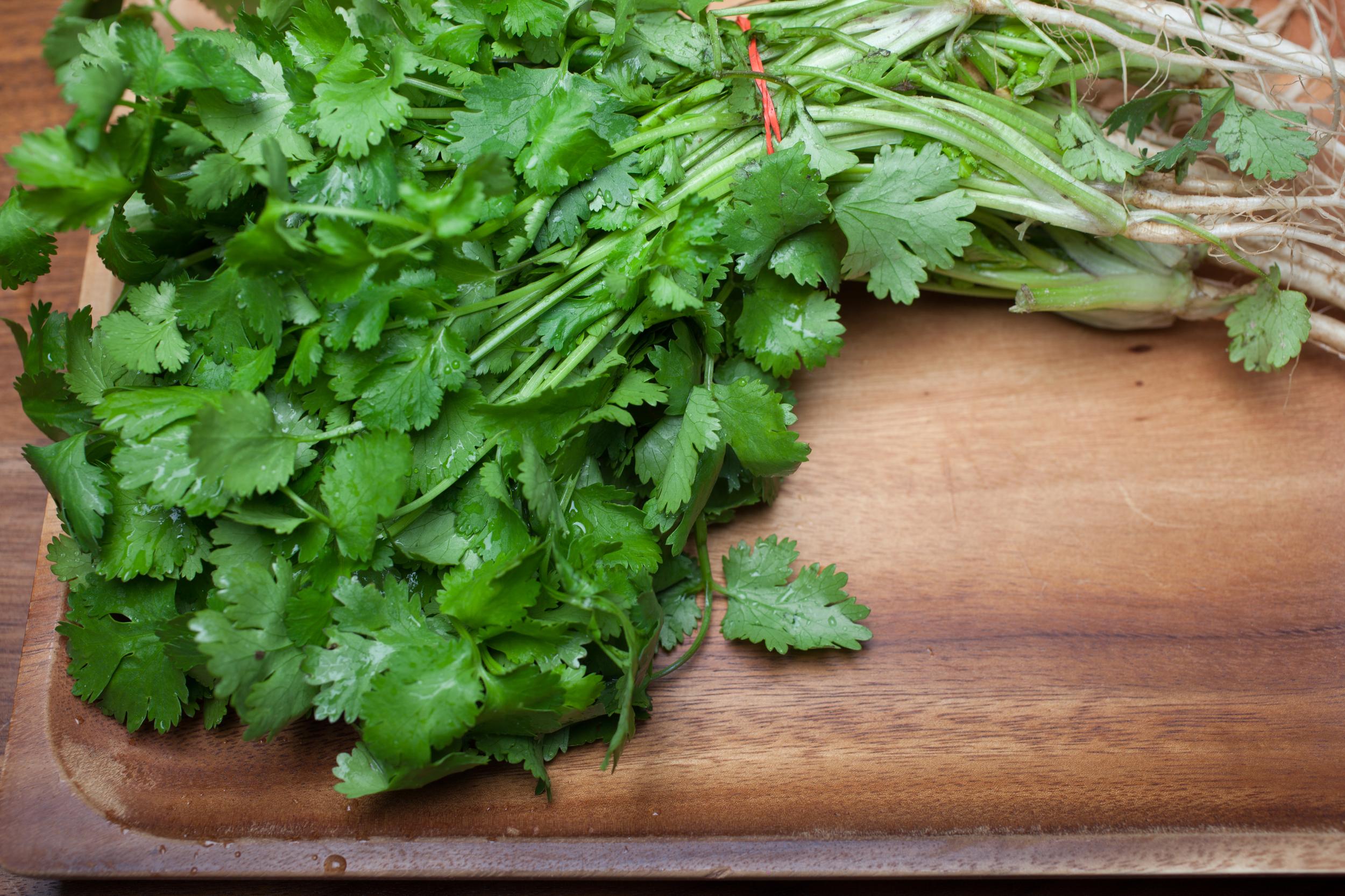 mademoiselle jules kale quinoa chickpeas healthy salad mlle jules food recipe coriander