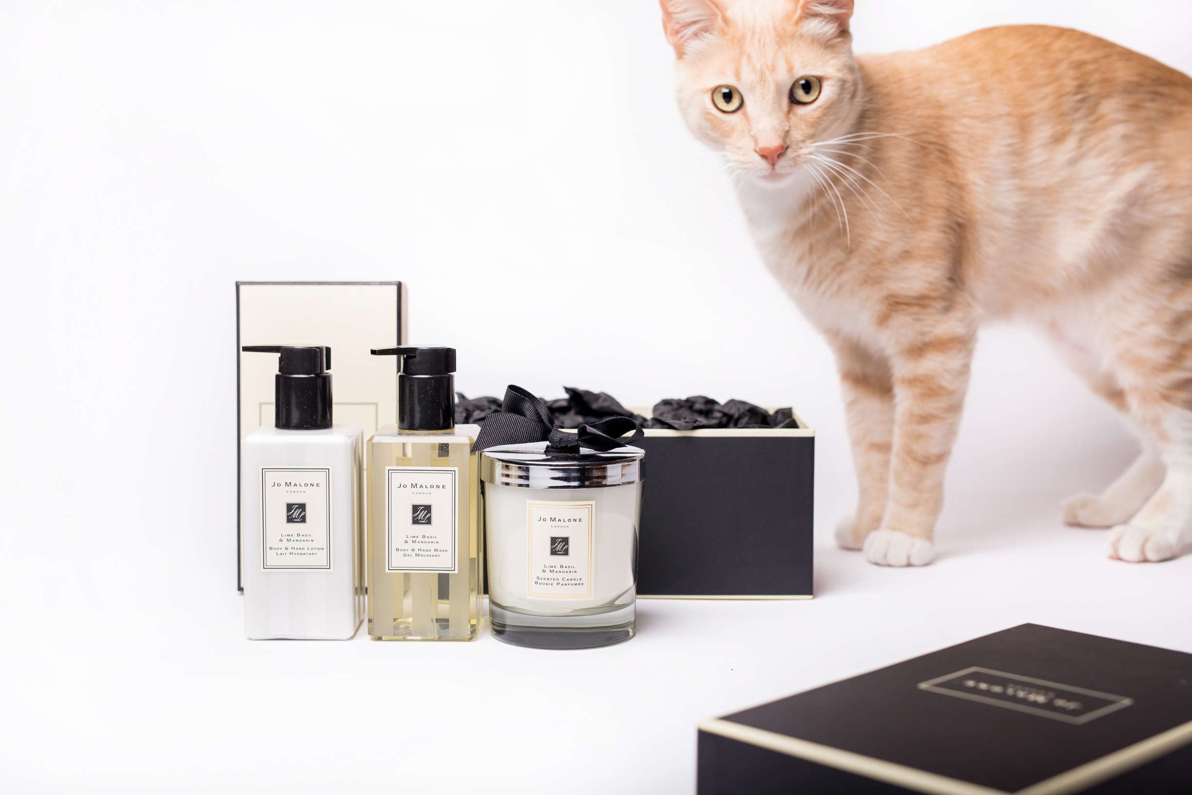 gifts on the go holt renfrew on line holiday shopping guide gist for host joe malone