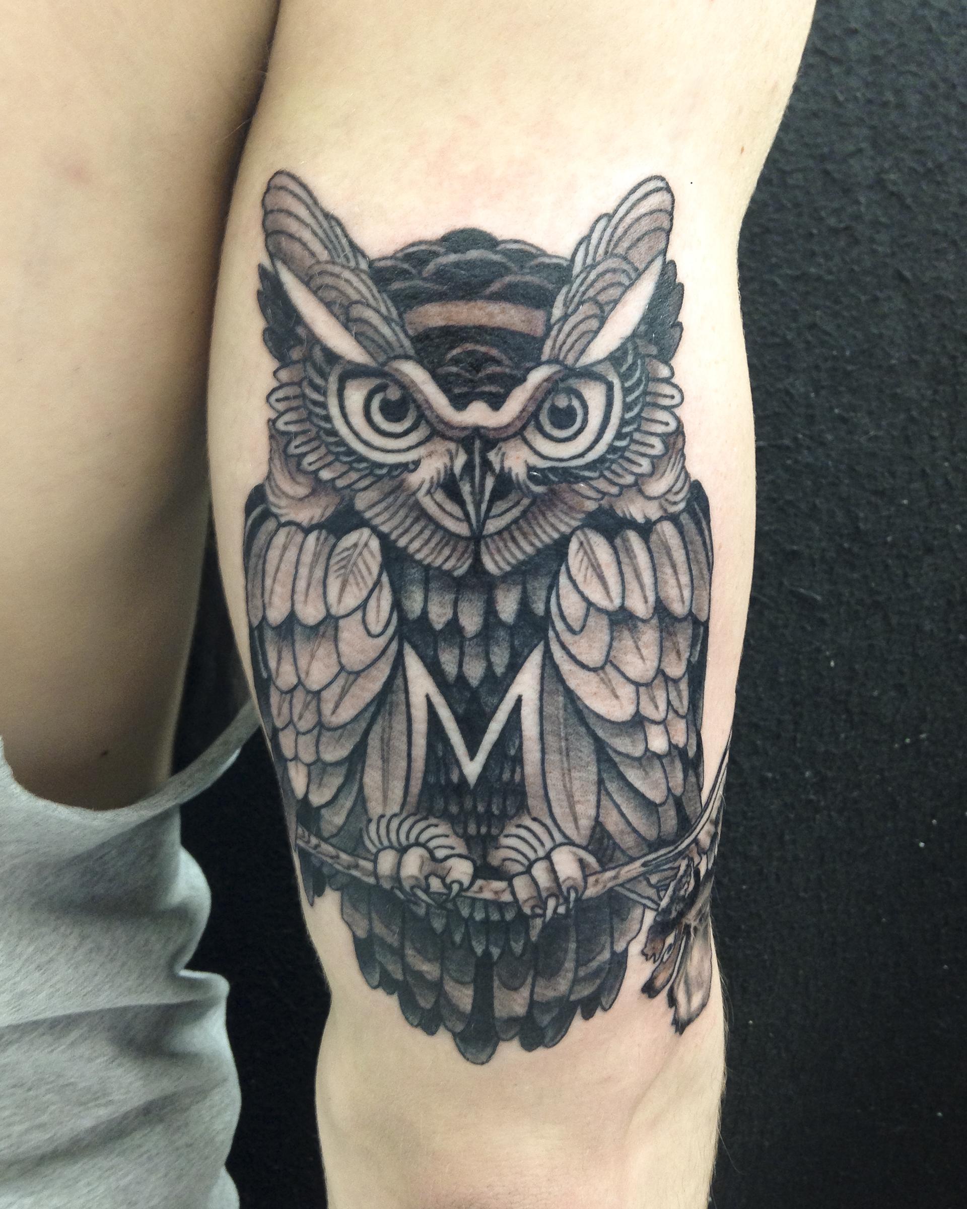 M owl fresh.jpg