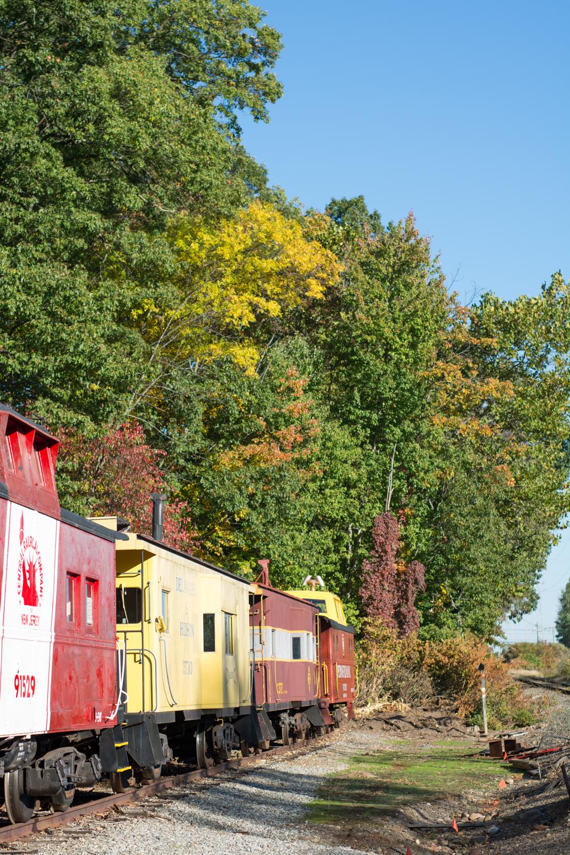 Michelle and Joe- Whippany Railway Musem 1950s Engagement - New Jersey -Olivia Christina Photography-3.jpg