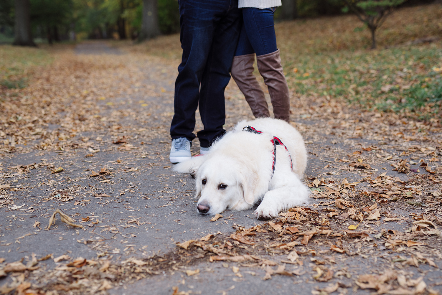 Melissa+Jeff- Local Park Engagement Session with Dog- Booth Park Nutley- New Jersey-Olivia Christina Photo-4.jpg