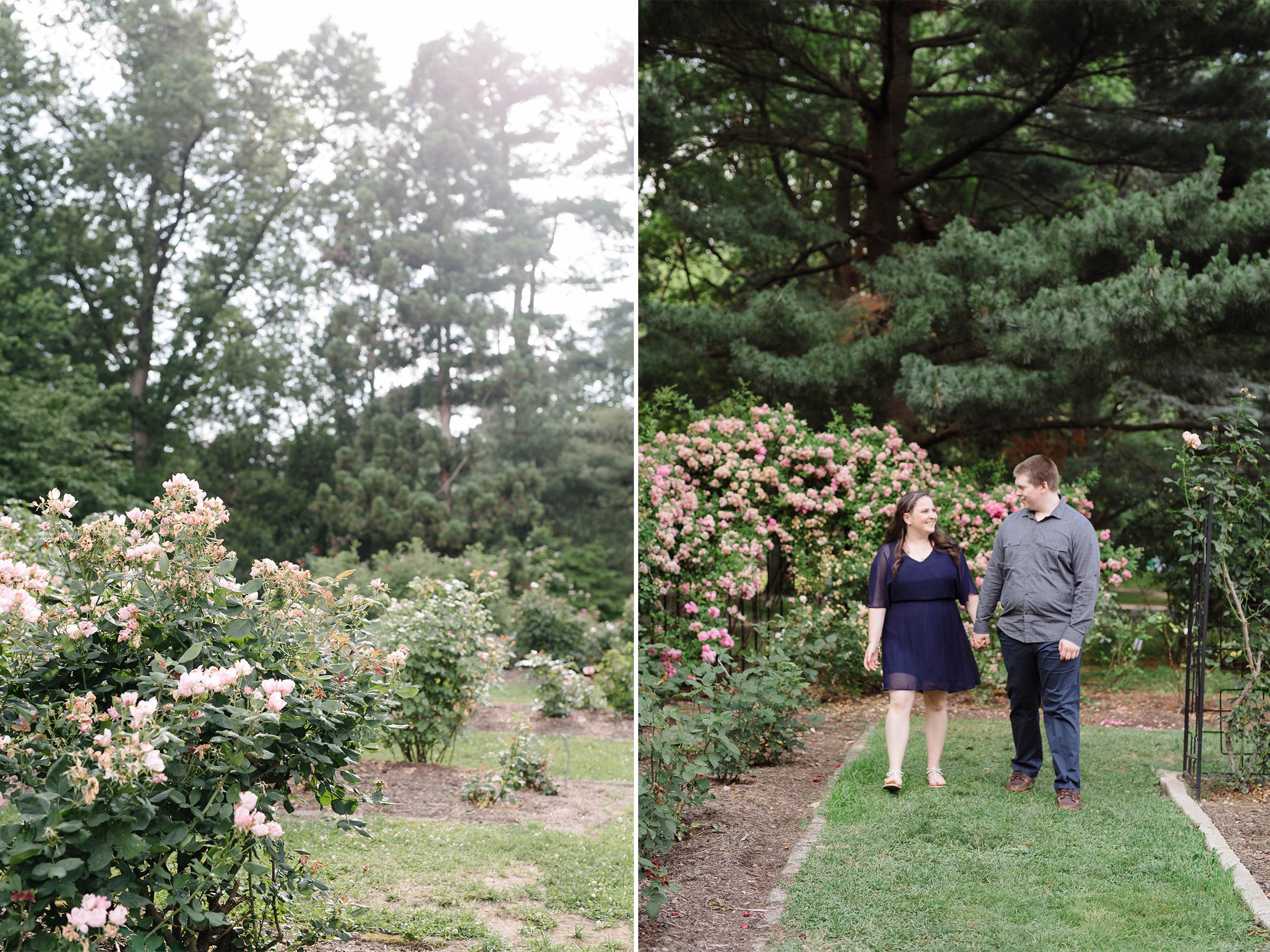 Brookdale Rose Garden- Engagement Photos- Golden Hour- Bloomfield New Jersey- Olivia Christina Photo.jpg