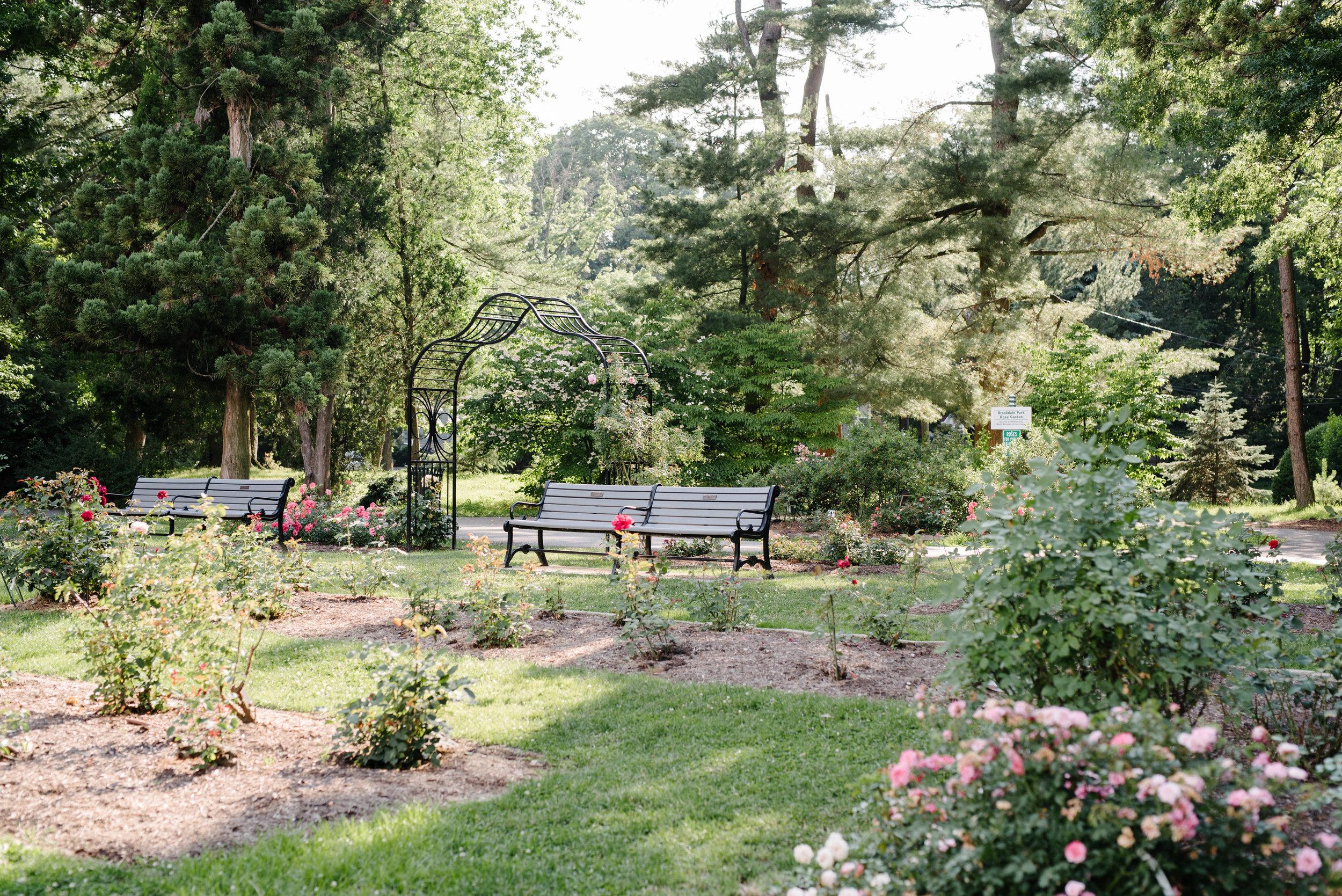 Jen + Kevin- Brookdale Park Rose Garden Engagement Session- Bloomfield New Jersey- Olivia Christina Photo-8.jpg