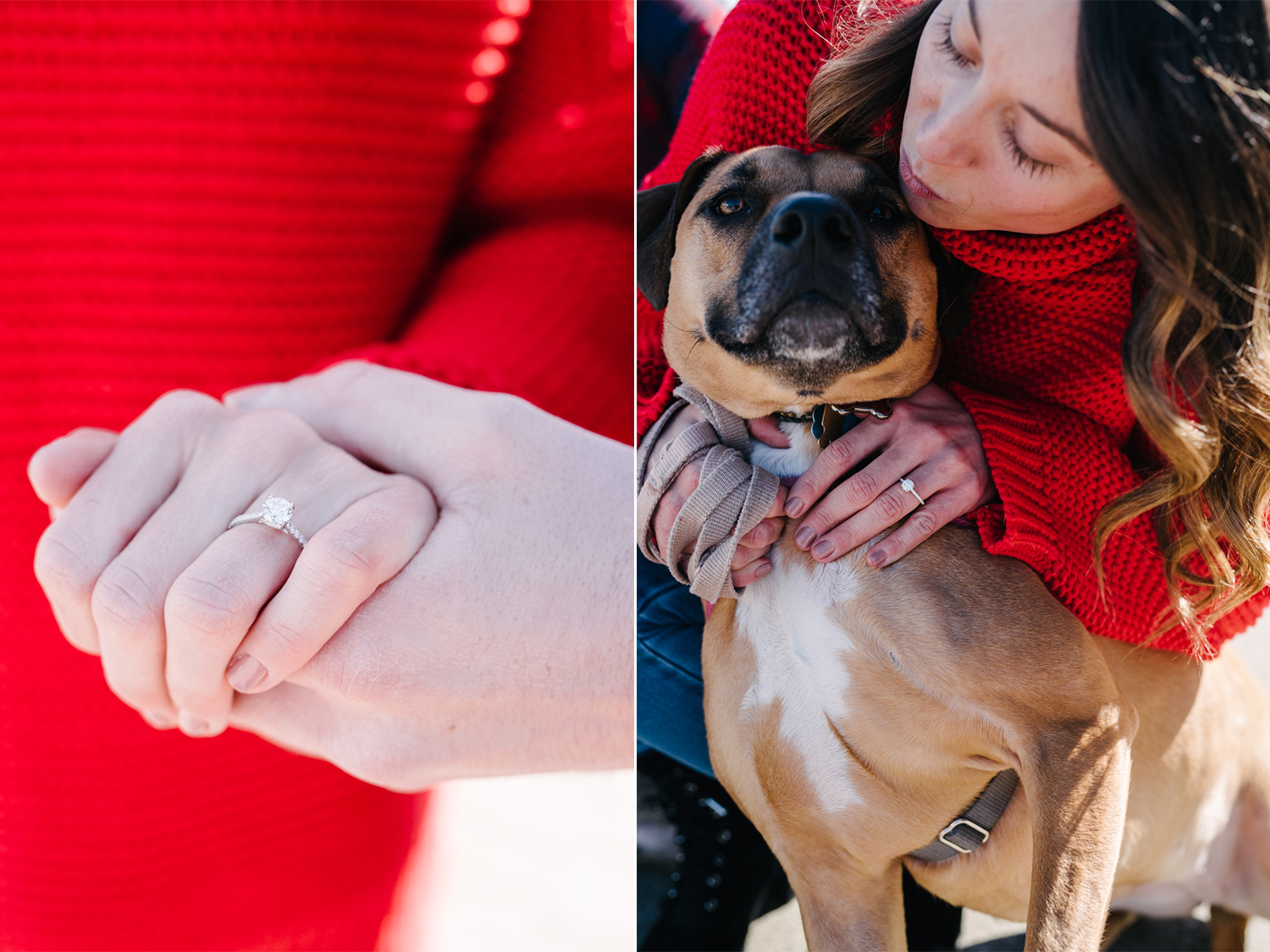 LSP Engagement Session- Dogs and Engagement Photos- Olivia Christina Photo.jpg