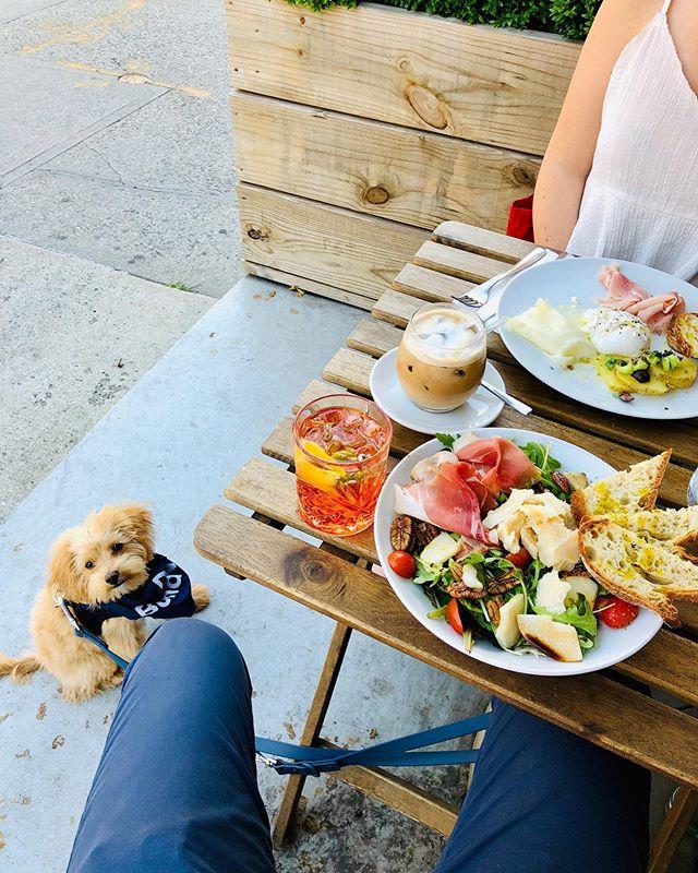Perfect Sunday morning enjoying Italian breakfast at Flora and puppy play at @bondvetclinic with @mangoinseason & @jongrado