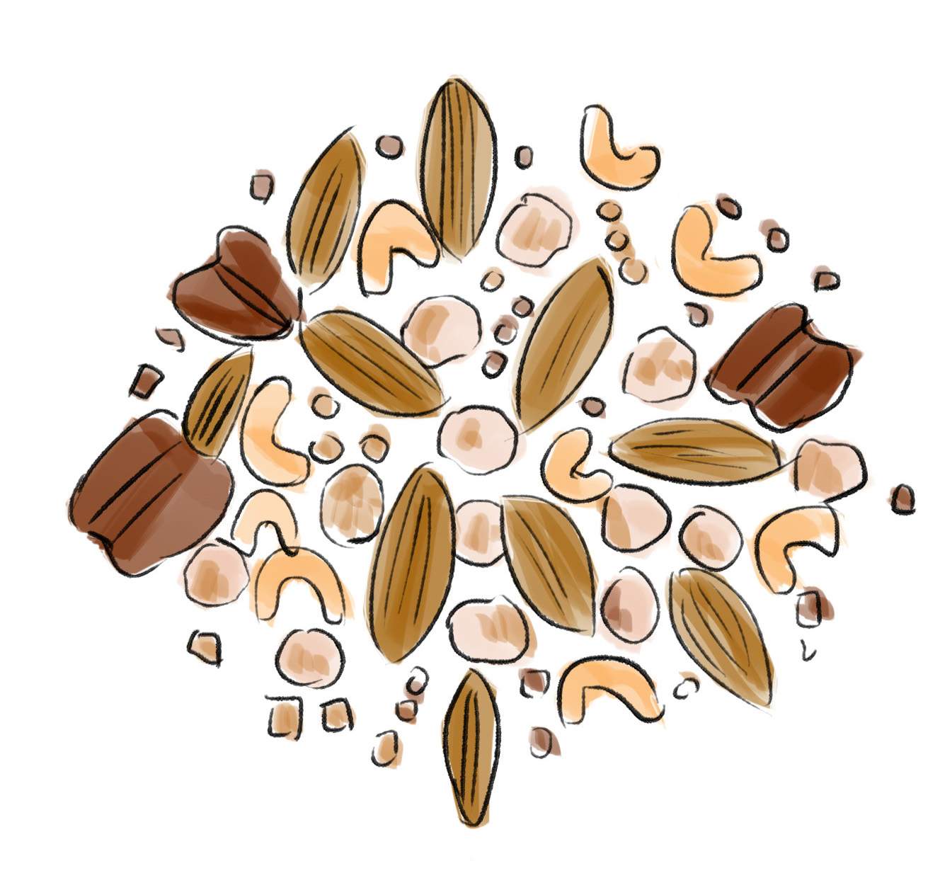 Nuts - healthy oils, vitamins, minerals