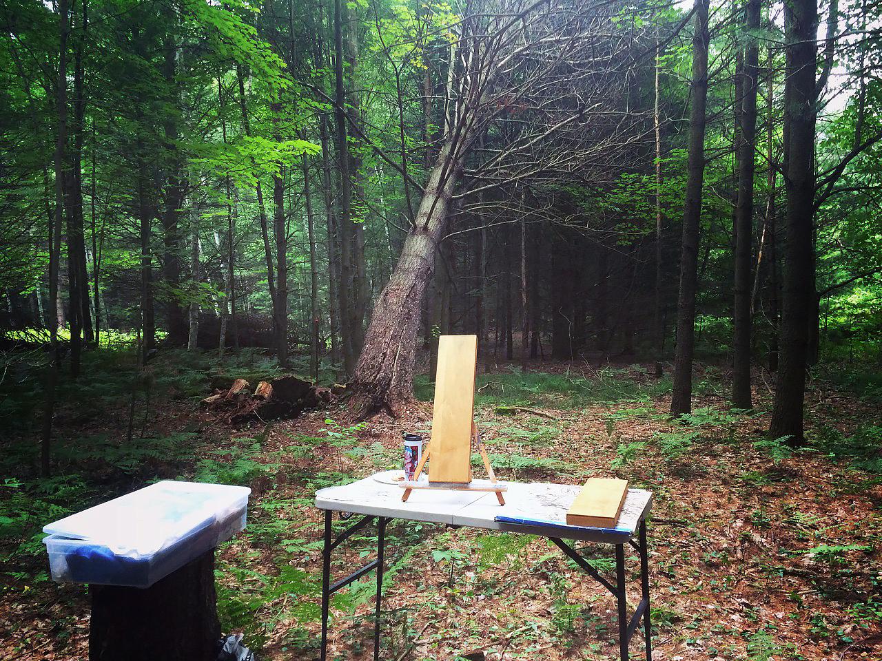 Outdoor studio | Sobieski, WI