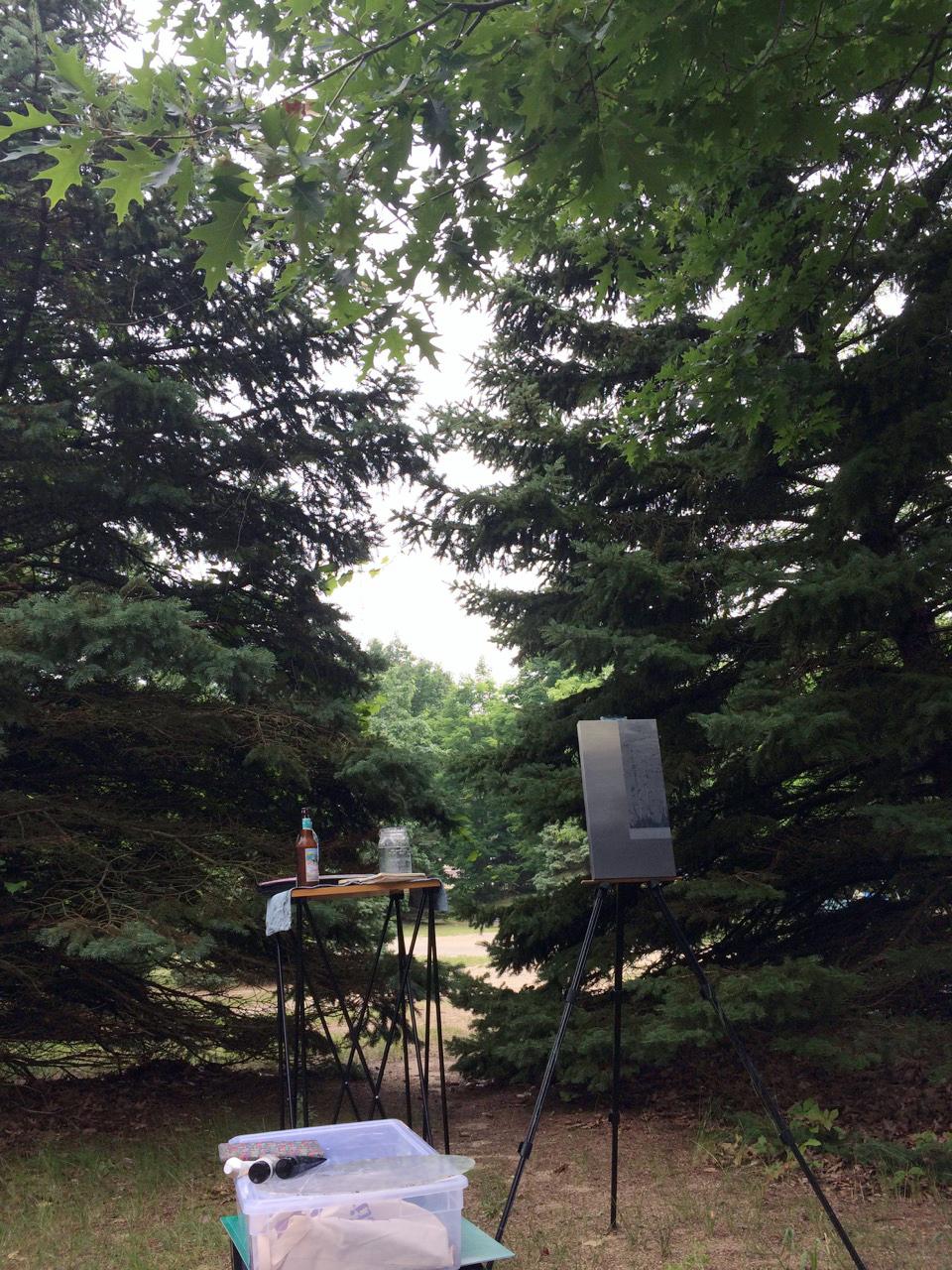 Van Buren State Park studio | South Haven, MI
