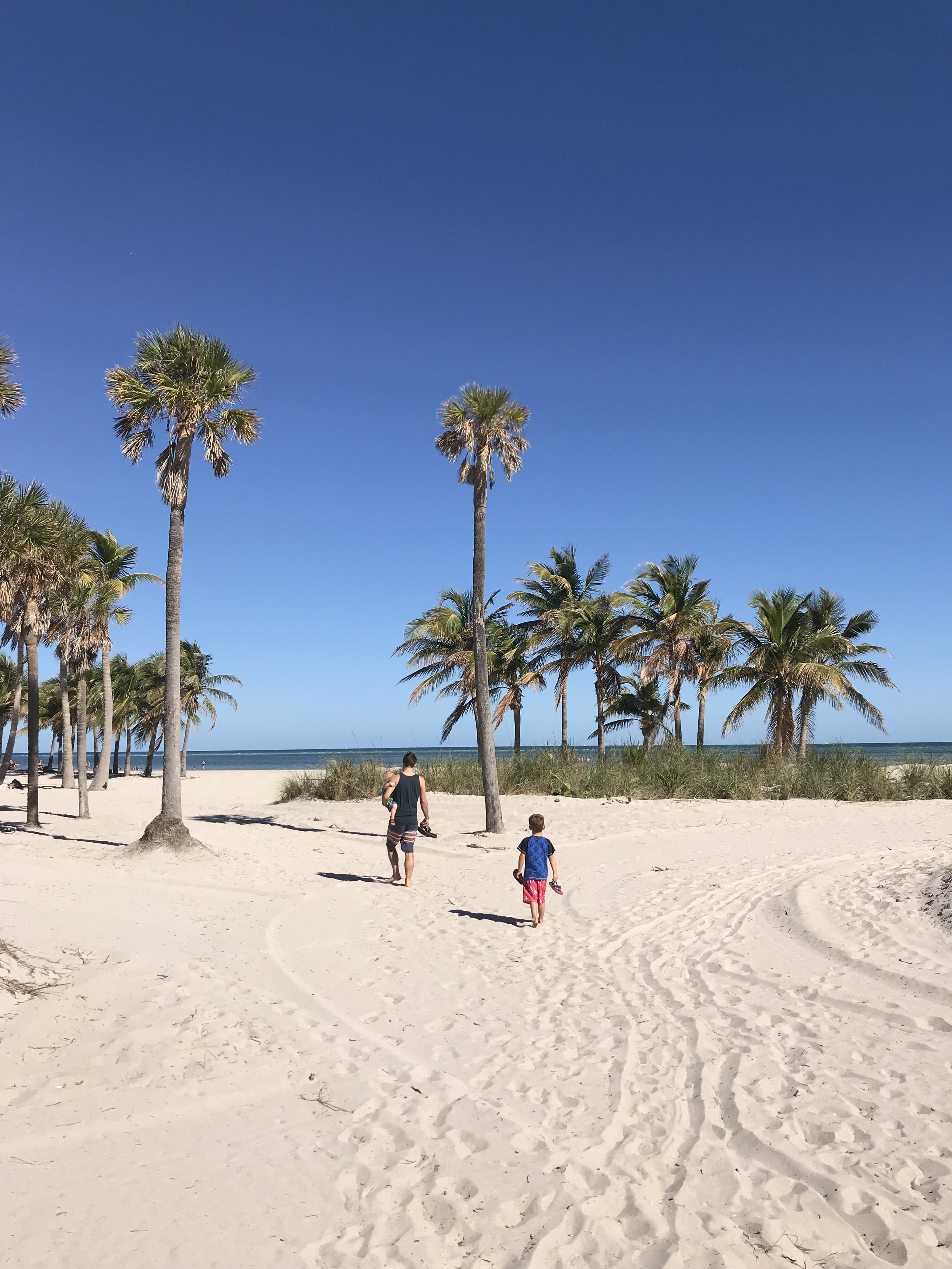 Not Michigan   Miami, FL   February