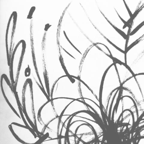 5 sec floral