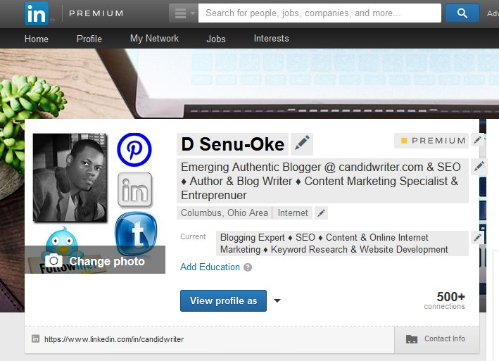 LinkedIN Profile Blogger Screenshot   Source